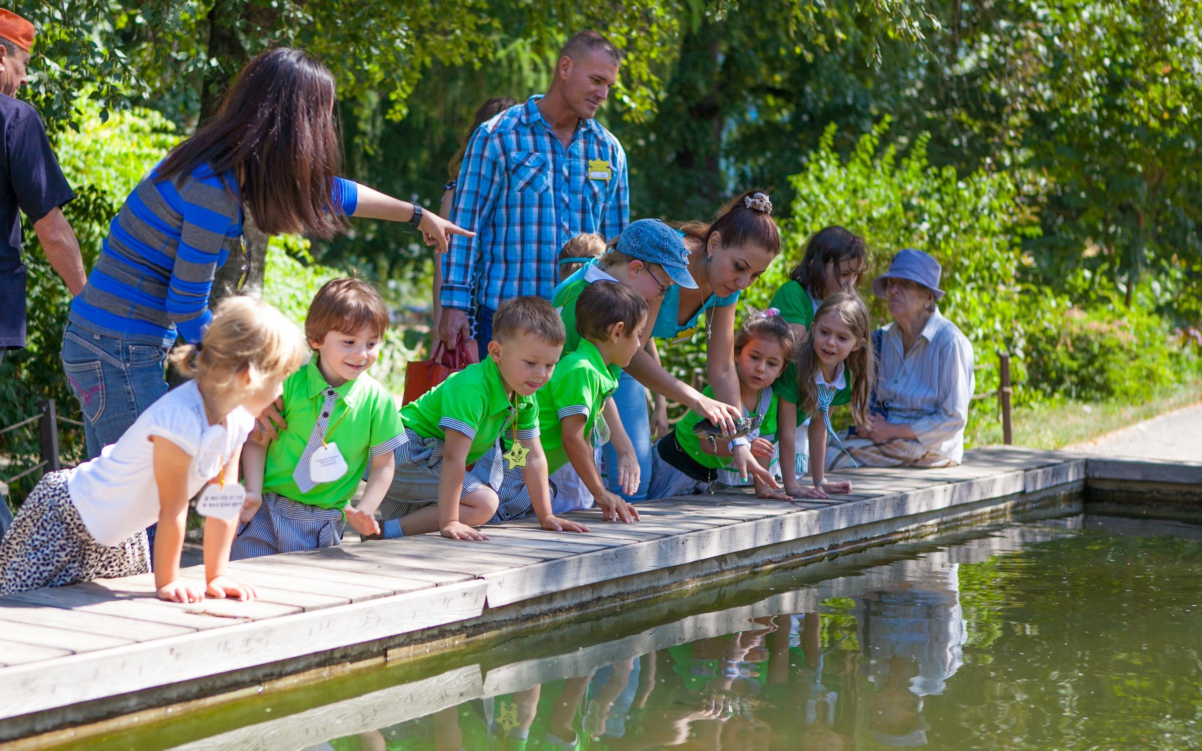 фотография Детского лагеря Magic Castle в переулке Чернышевского