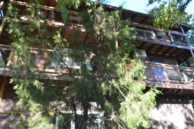 фотография Гостевого дома Лев и яичница