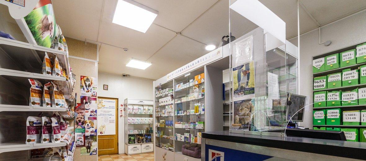 Фотогалерея - Ветеринарная клиника Велес