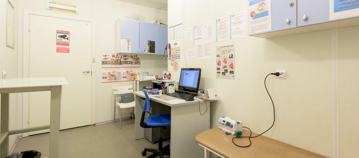Фотогалерея - Ветеринарные клиники доктора Сотникова