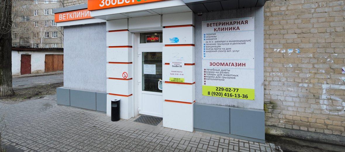 Фотогалерея - Ветеринарная клиника Зоовет36 на Моисеева