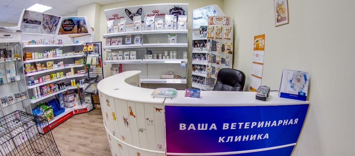 Фотогалерея - Ветеринарная клиника Клаус на Мехзаводе
