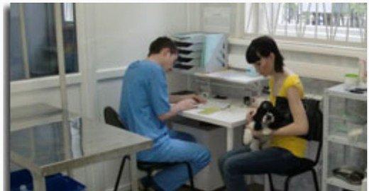 фотография Ветеринарной клиники Универ на Сколковском шоссе
