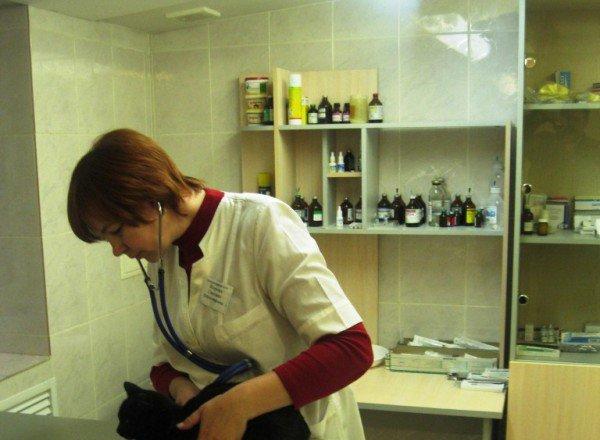 фотография Ветеринарной клиники Астарта