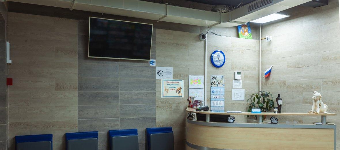 Фотогалерея - Ветеринарная клиника ПАНВЕТ на Шарикоподшипниковской улице