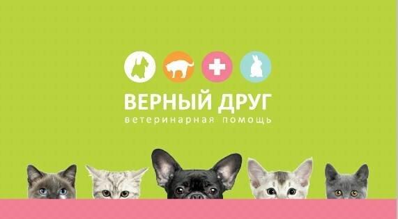 фотография Ветеринарной клиники Верный друг на Нижегородской улице