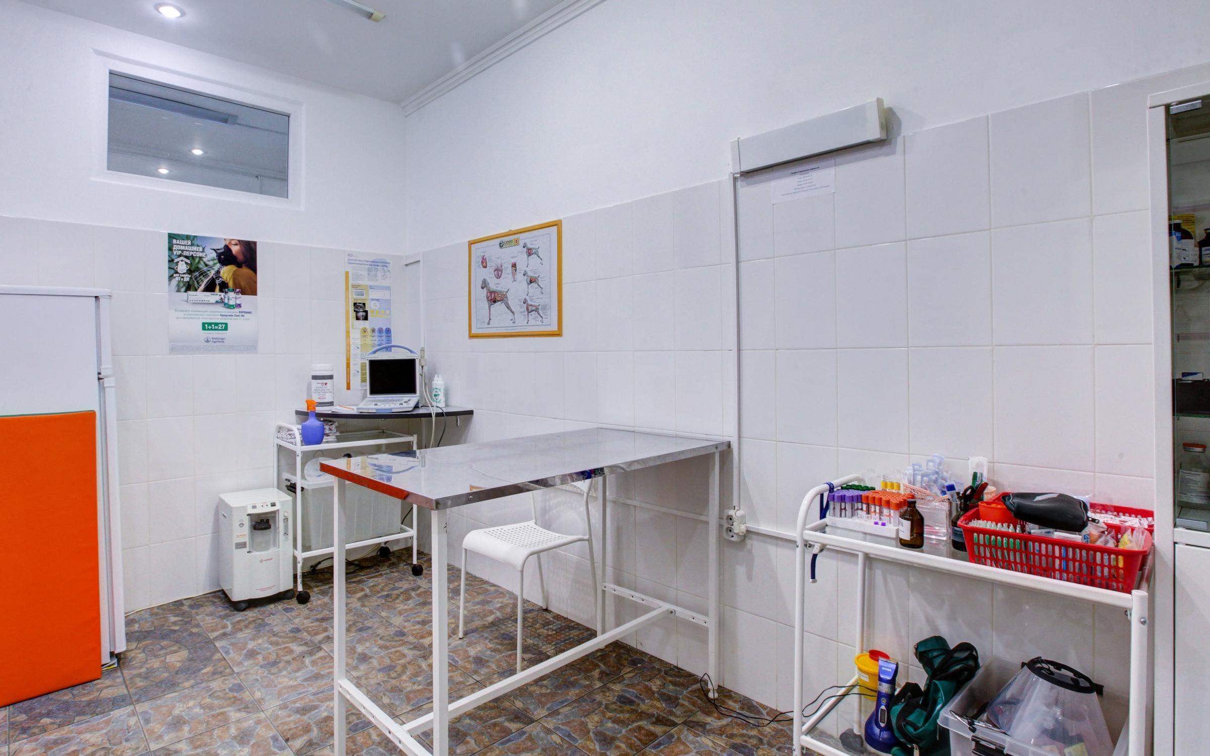 фотография Ветеринарной клиники Любимый Носик