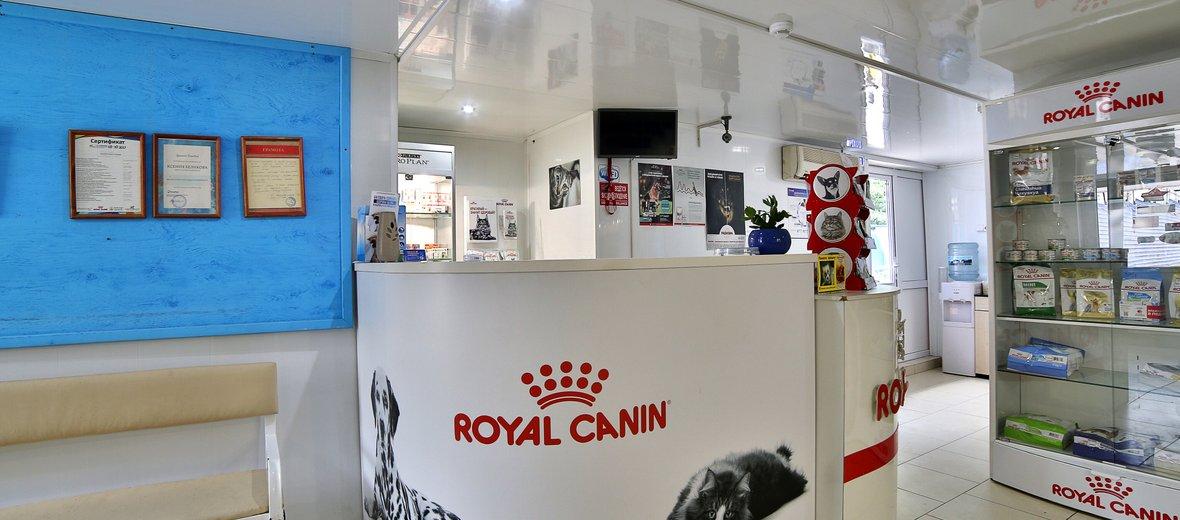 Фотогалерея - Ветеринарный центр Здоровые лапки на Армавирской улице