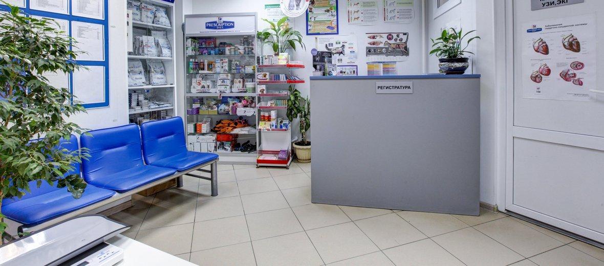 Фотогалерея - Ветеринарная клиника Ветхэлп в Подольске