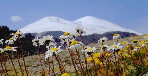 фотография Туристического клуба Elbrus.Guide на Соборной улице в Пятигорске
