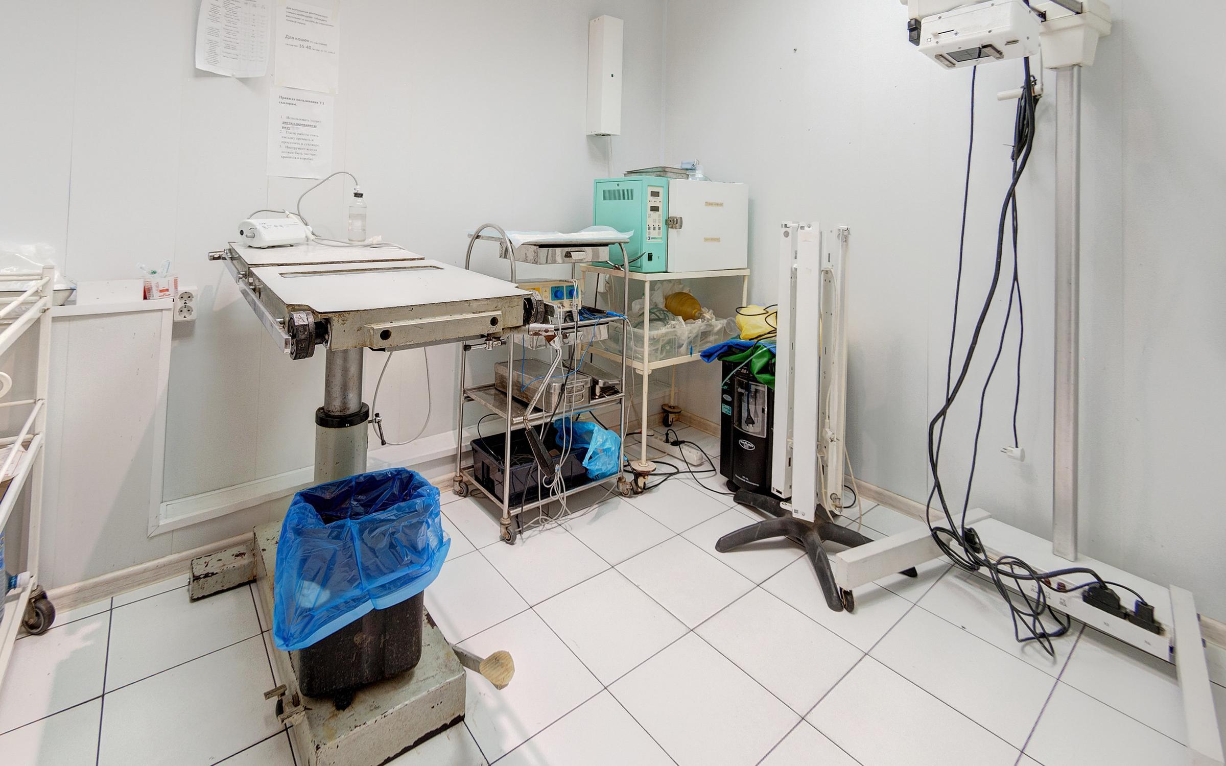 Анита ветеринарная клиника Иваново адрес контакты