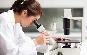 фотография Подсчет тромбоцитов