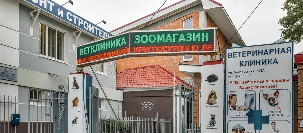 Фотогалерея - Центр ветеринарной медицины на Белорусской улице