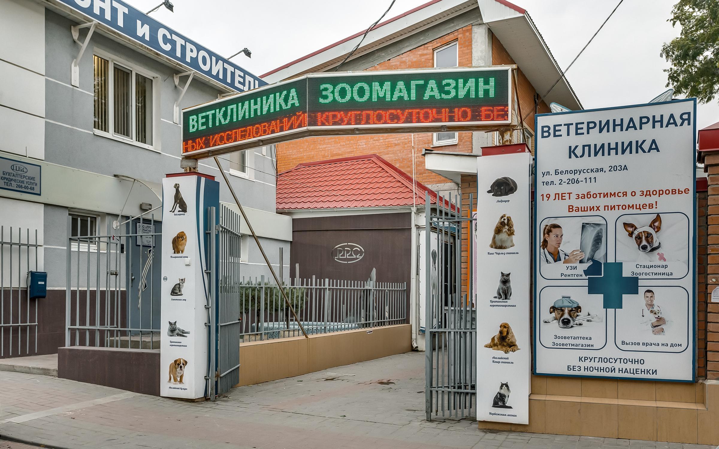 фотография Центр ветеринарной медицины на Белорусской улице