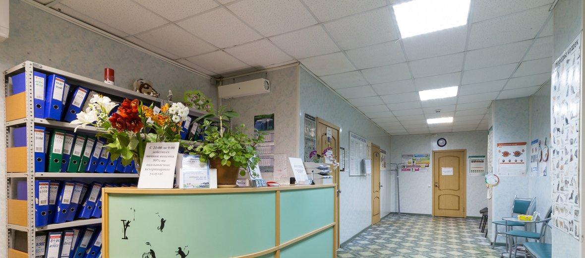 Фотогалерея - Ветеринарная клиника Бона Менте на Хавской улице
