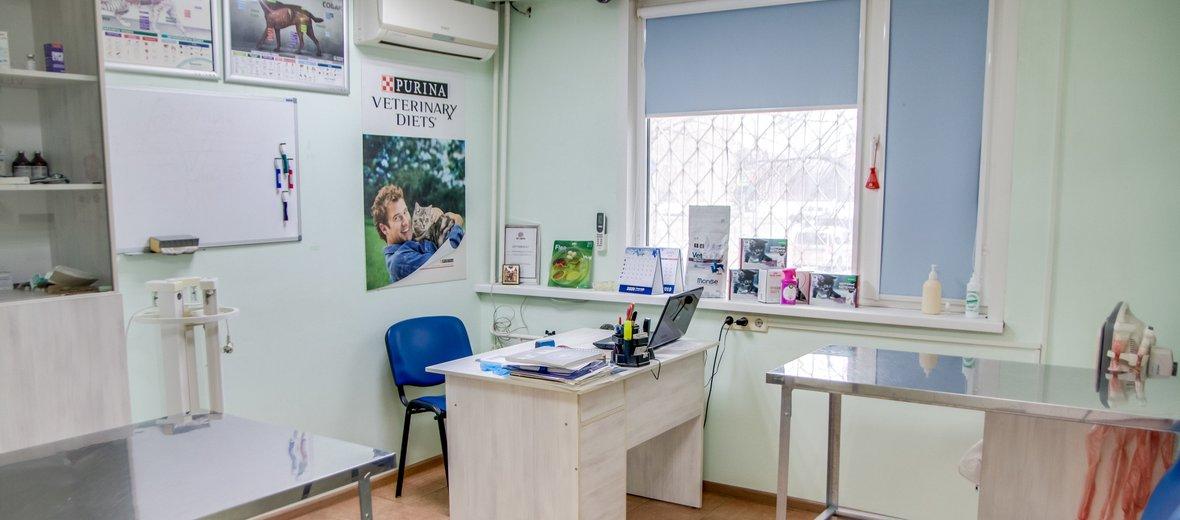 Фотогалерея - Ветеринарная клиника Зоо-Рай на улице Юбилейная, 17