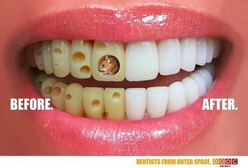 фотография Стоматологии Городская стоматология на Петербургском шоссе