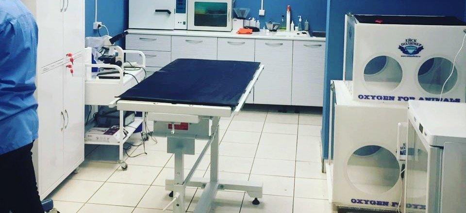 фотография Ветеринарной клиники ВЕТКО