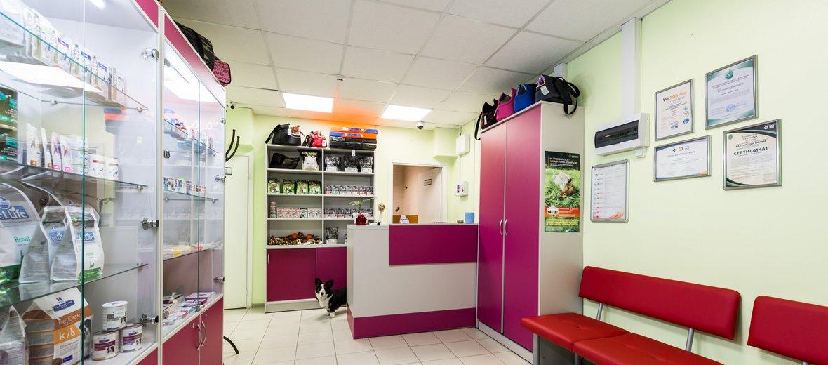 Фотогалерея - Ветеринарный центр доктора Базылевского А.А. на Петергофском шоссе