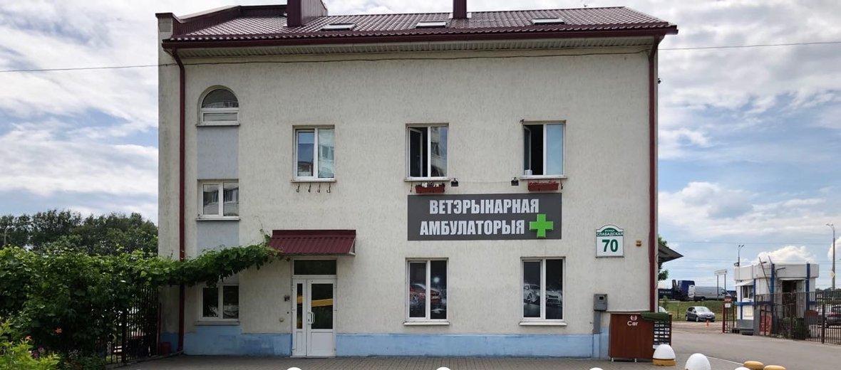 Фотогалерея - Ветеринарный кабинет Вет Мир на Слободской улице