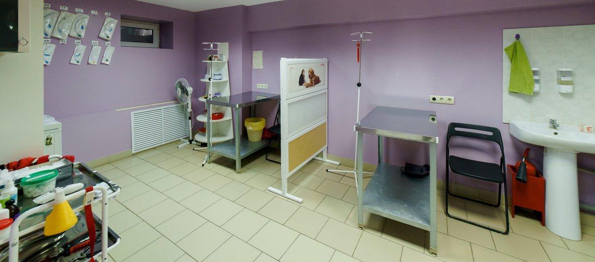 Фотогалерея - Ветеринарная клиника ZooZoo на улице Коминтерна