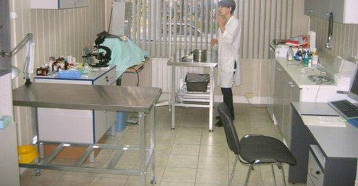Детская поликлиника структура задачи принципы работы