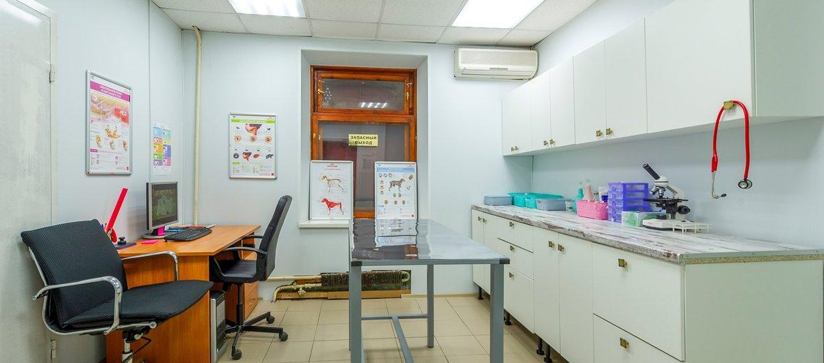 Фотогалерея - Ветеринарная клиника Мой Друг
