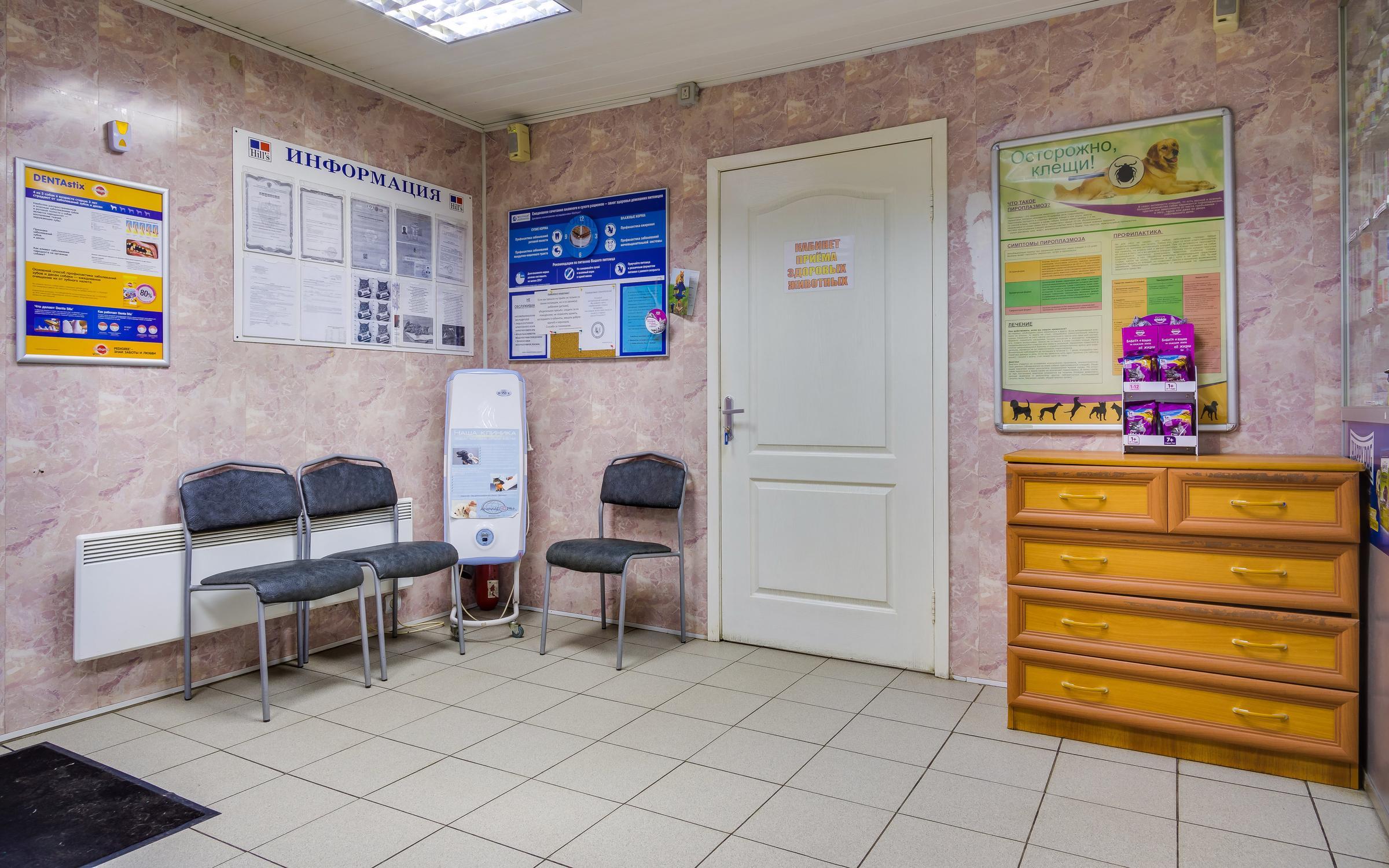 Ветеринарная клиника проспект мельникова 10