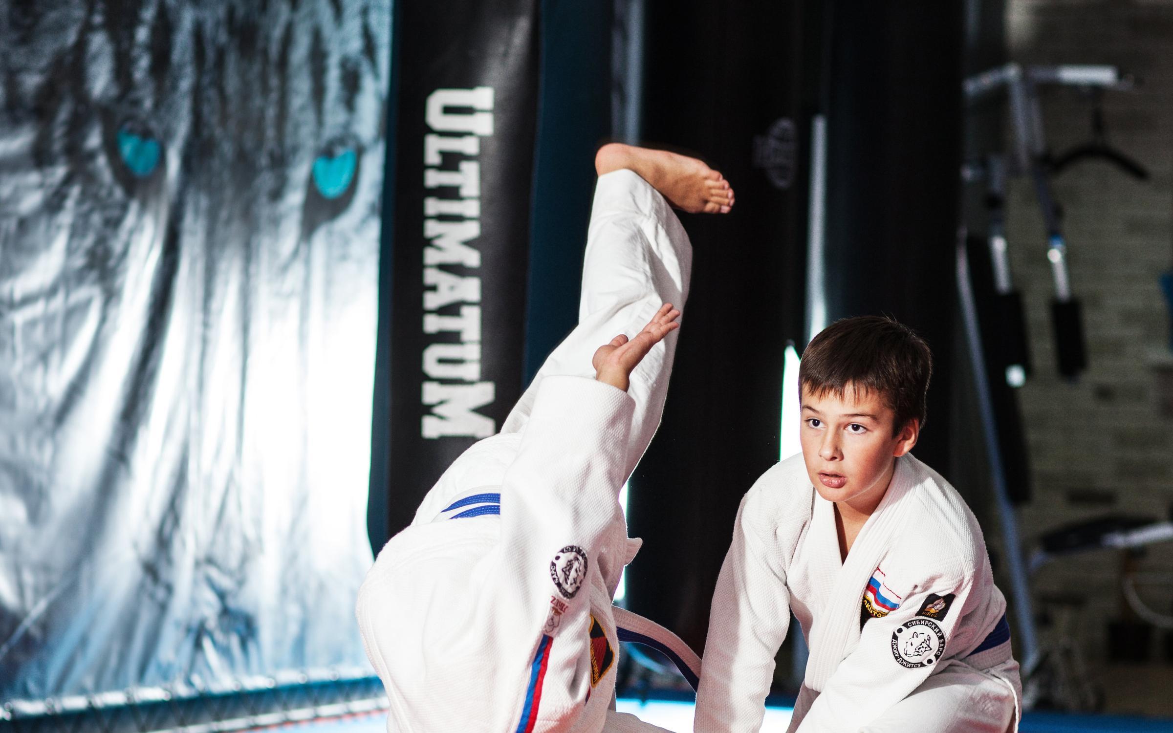фотография Спортивного клуба боевых искусств Сибирский Барс на метро Каширская