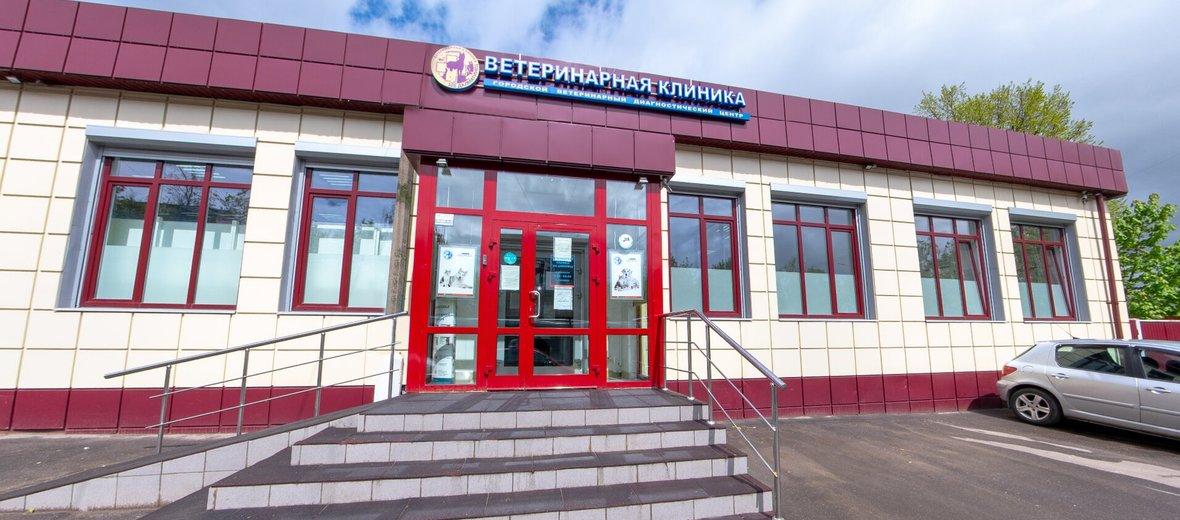 Фотогалерея - Ветеринарная клиника 101 Далматинец в Химках на проспекте Мельникова