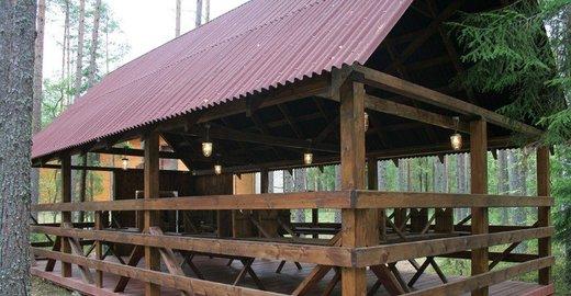 Центр отдыха Аврора находится в 115 км от Санкт-Петербурга в сосновом лесу на берегу озера.