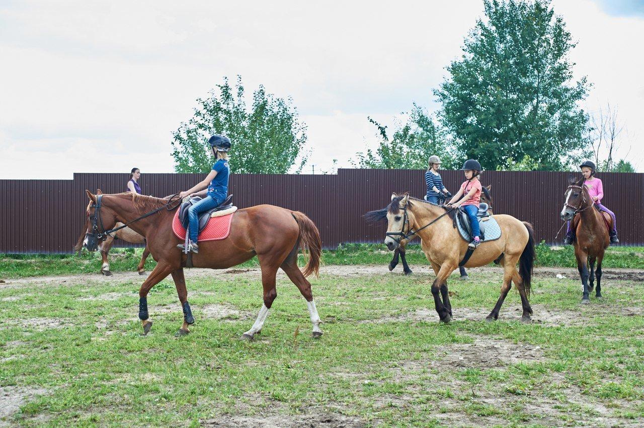 Конные клубы москвы рейтинг rnb клуб москва