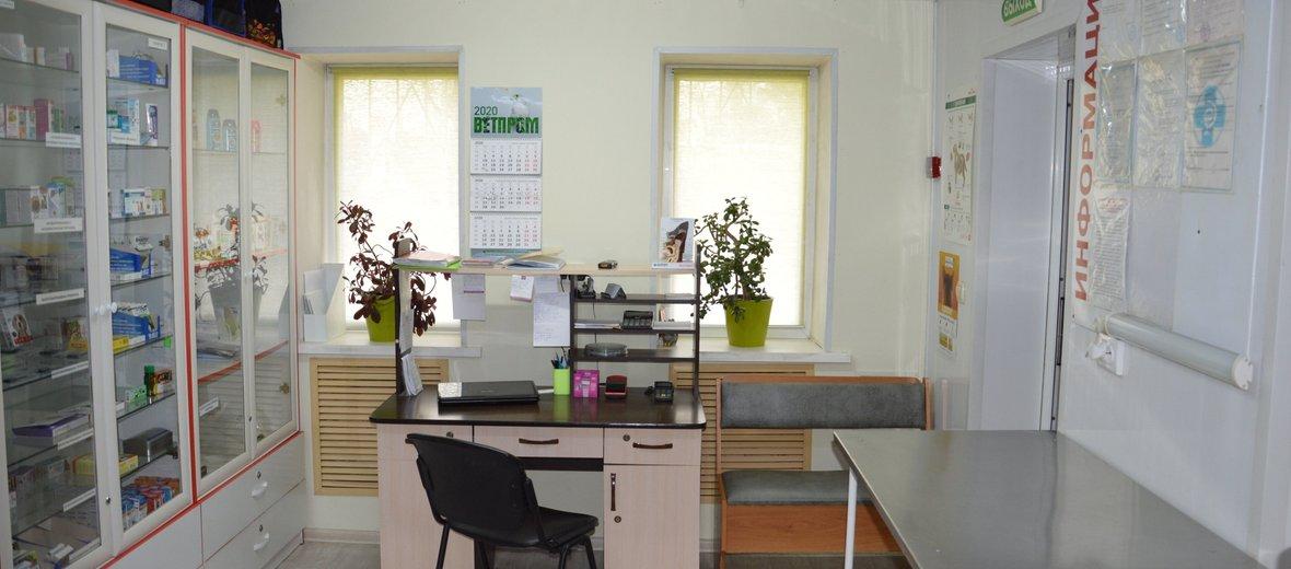Фотогалерея - Ветеринарный центр Элирис