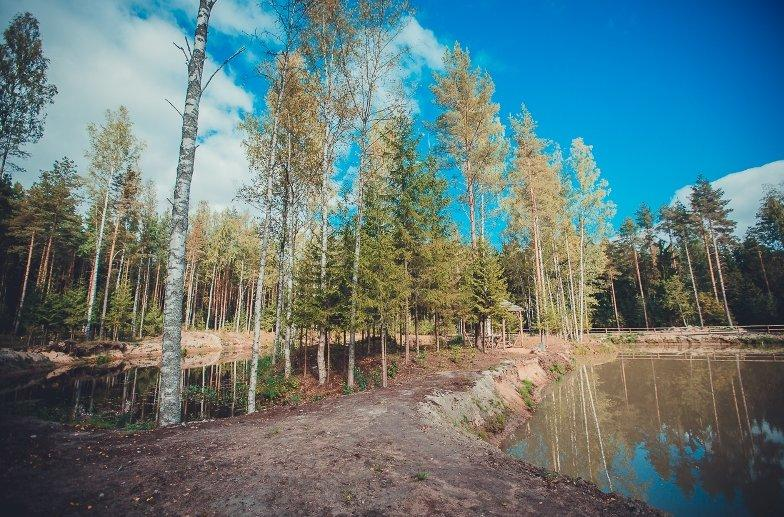 фотография Базы отдыха Драгунский ручей в поселке имени Морозова