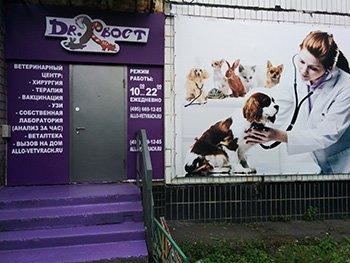 Фотогалерея - Ветеринарная клиника Доктор Хвост у метро Тёплый стан